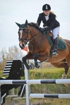 cavallo-maremmano-salto-1