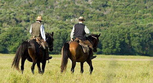 cavallo-maremmano-butteri-duo-in-passeggiata-retro